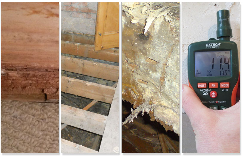 Damp Proofing Plymouth devon | Woodworm Treatment Plymouth Devon Cornwall | Timber Surveys Plymouth | Damp Surveys Plymouth Devon Cornwwall | Rising Damp | Dry Rot | Wet Rot